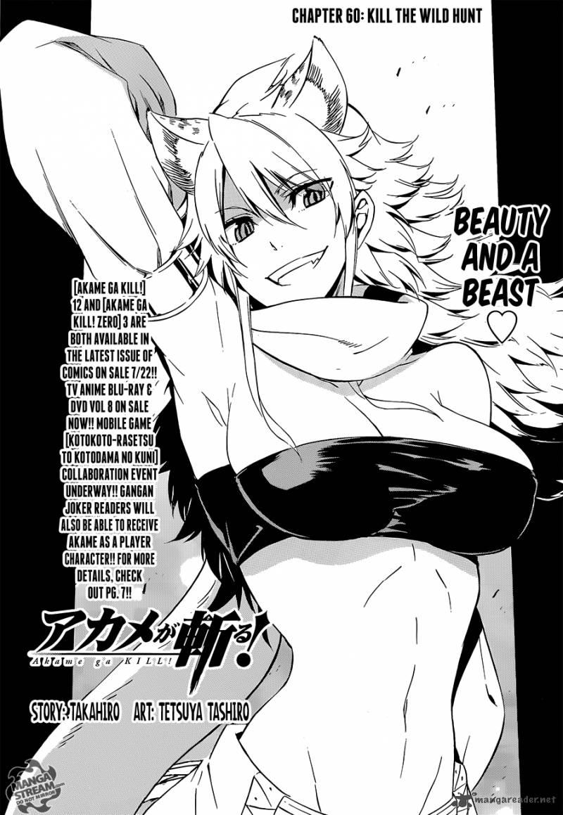 Akame Ga Kiru Chapter 60 Page 1