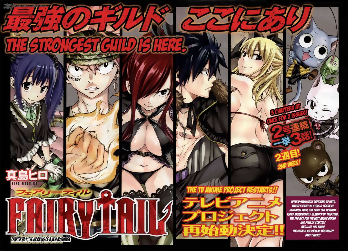 Fairy Tail Chapter 341 Page 2